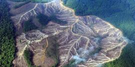 Colombia presenta su escuela ambiental