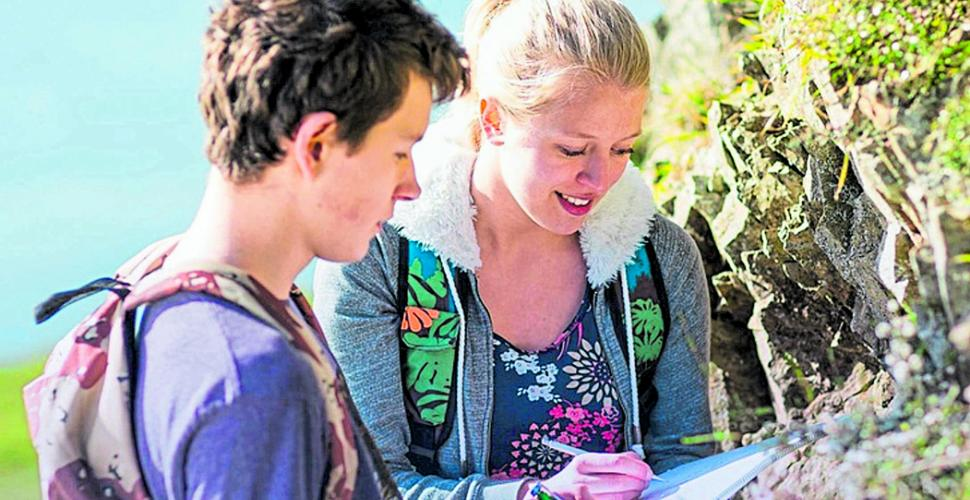 Acceso a cursos en línea de Nueva Zelanda