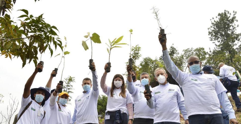 EL tributo a gigantes en el Valle y alistan parque ambiental Corazón de Pance